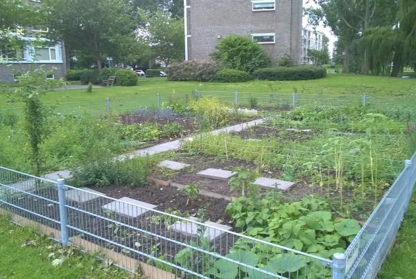 Coop tuin bij Dreeftuin