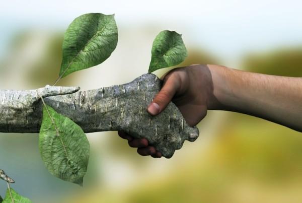 Groen hand