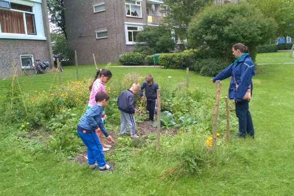 Tuin van Dreef2